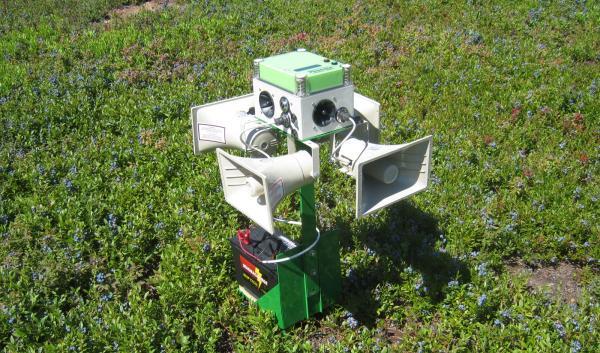 Installation and maintenance of Bird deterrent system